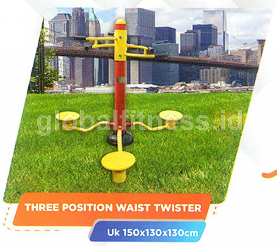 Three Position Waist Twister